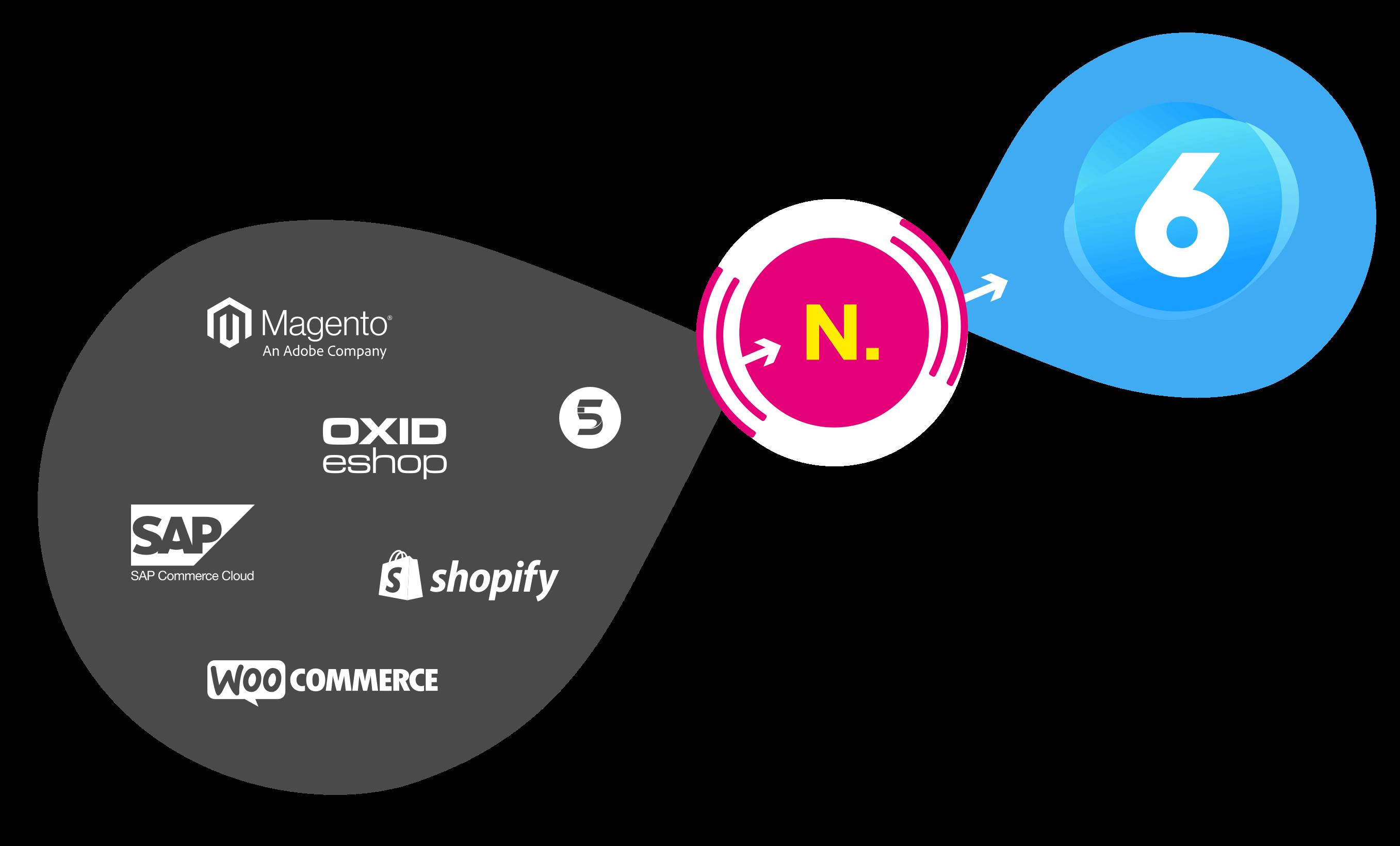 Shopware Migration mit NETFORMIC