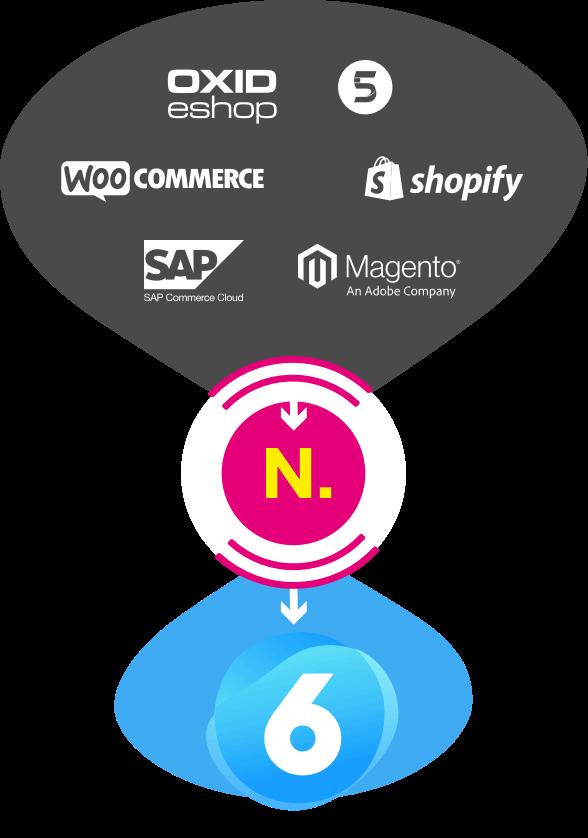 Shopware Migration mit NETFOMIC
